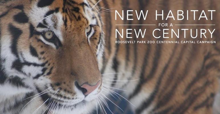 new habitat