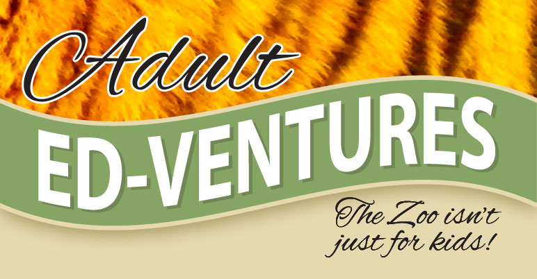 ed-ventures-slide